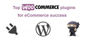 Top WooCommerce Plugins for eCommerce success