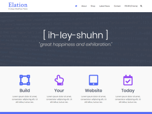 Elation WordPress theme